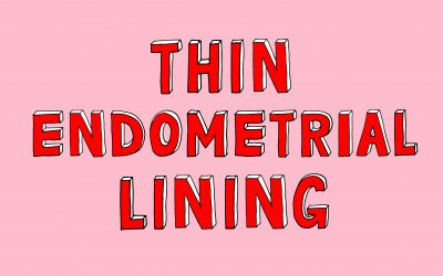 Our tips on how to increase your Endometrial lining