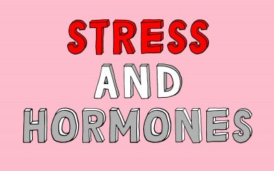 How stress affects our hormones