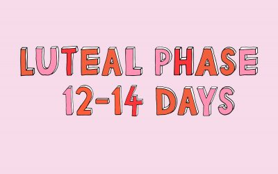 Your Luteal Phase & Pregnancy